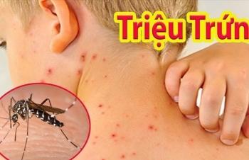 Hà Nội khẩn cấp ứng phó với nguy cơ bùng phát dịch sốt xuất huyết