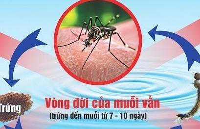 Không tự ý điều trị sốt xuất huyết
