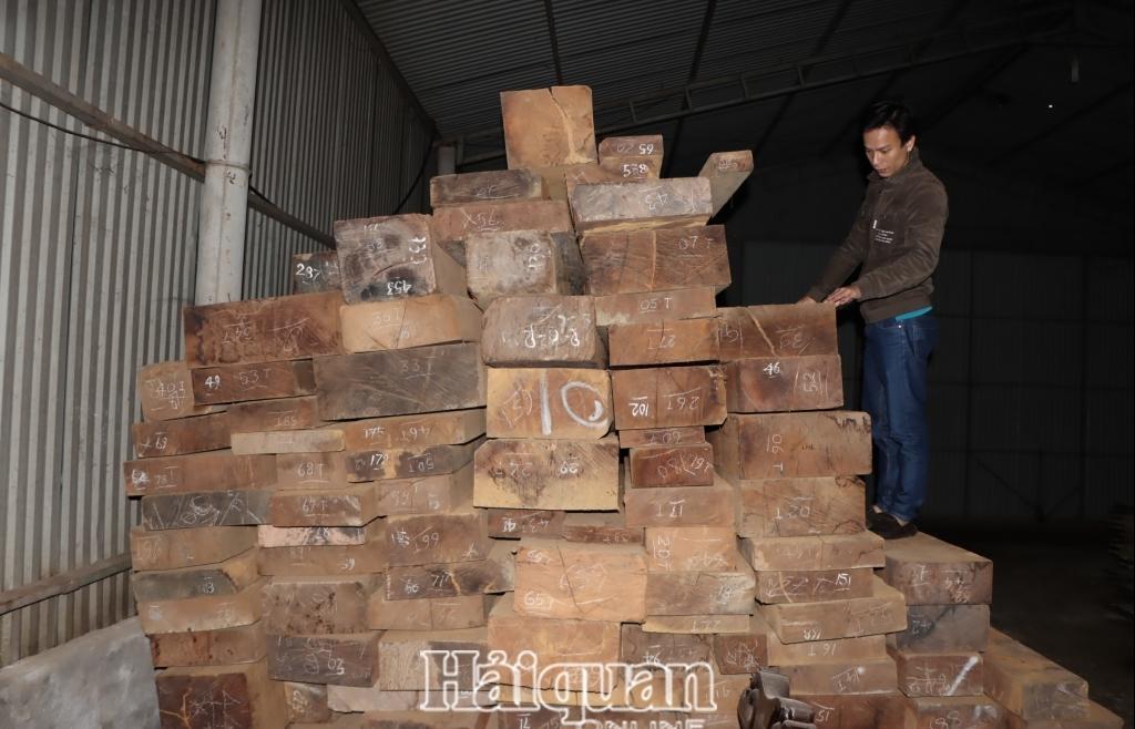 Lào điều chỉnh chính sách, nhập khẩu gỗ qua địa bàn Hà Tĩnh khởi sắc