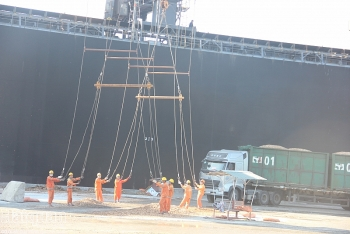 Công ty CP Cảng quốc tế Lào - Việt đạt doanh thu 47,8 tỷ đồng