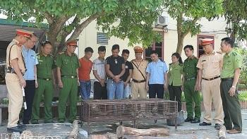 Hải quan Hà Tĩnh phối hợp bắt 14 kg tê tê, rùa và hơn 410 kg gỗ quý