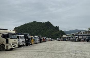 Lạng Sơn: Dừng tiếp nhận hàng hoá lên cửa khẩu Tân Thanh để xuất khẩu