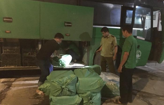 Nghệ An: Phát hiện và tiêu hủy hơn 1,2 tấn sản phẩm động vật đã bốc mùi hôi thối