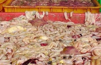 Nghệ An: Phát hiện 1,6 tạ nội tạng động vật không rõ nguồn gốc