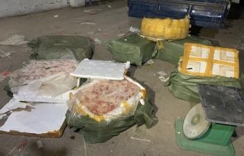 Liên tiếp bắt giữ gần 1 tấn sản phẩm động vật đã bốc mùi hôi thối