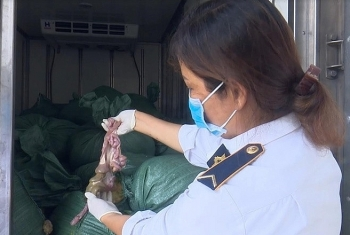 Nghệ An: Bắt 2 tấn lòng lợn đã bốc mùi hôi thối