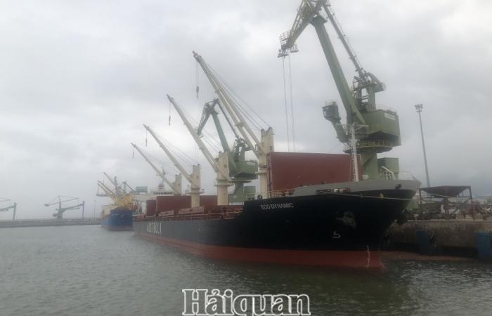 Hà Tĩnh sẽ có chính sách hỗ trợ doanh nghiệp vận chuyển hàng hóa vào, ra cảng Vũng Áng