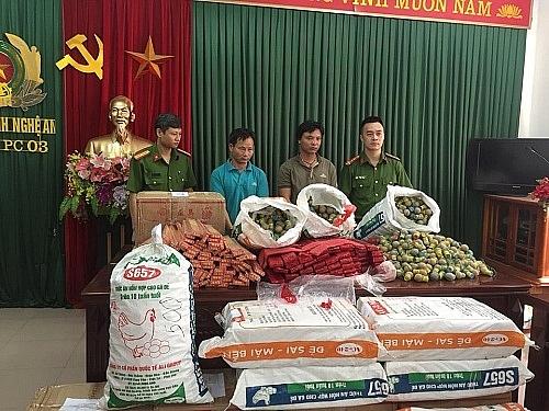 khoi to hai doi tuong van chuyen gan 600 kg phao no o nghe an