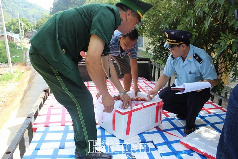 Trung Quốc kiểm nghiệm Covid-19 đối với thanh long và container lạnh