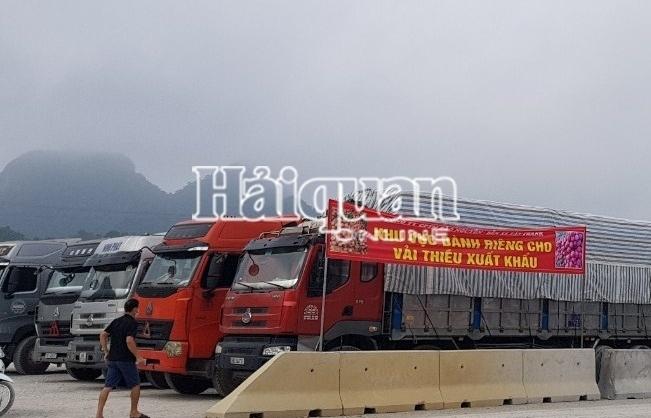 Hải quan Tân Thanh: Thông quan 5.000 tấn vải thiều sang Trung Quốc