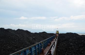 Cảnh sát biển tạm giữ 2.000 tấn bã xít không rõ nguồn gốc