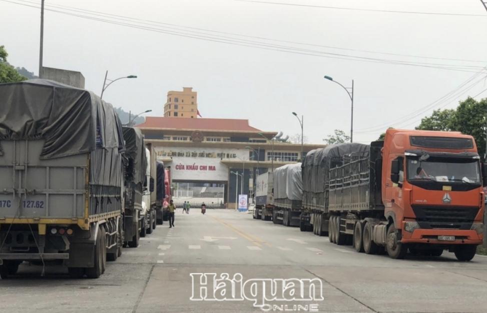Sẵn sàng tạo điều kiện thuận lợi cho dược liệu nhập khẩu qua cửa khẩu Chi Ma