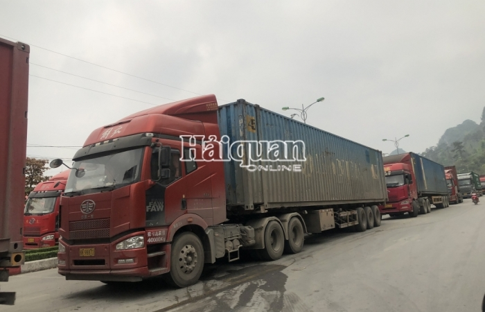 Lạng Sơn chủ động phân luồng, điều tiết phương tiện xuất nhập khẩu hàng hóa