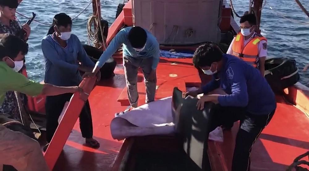 Lực lượng chức năng kiểm tra tàu vi phạm.