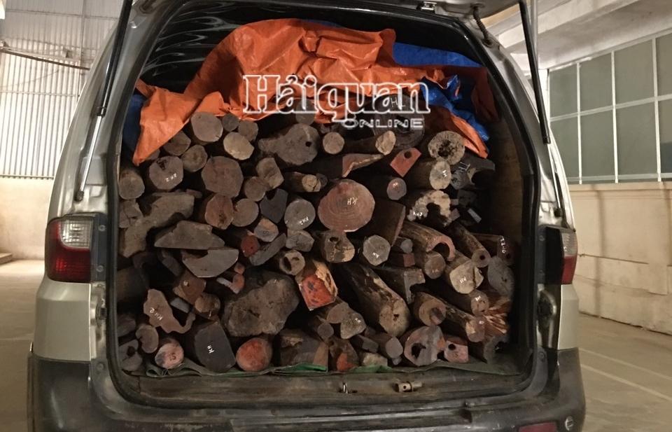 Hải quan Cầu Treo chủ trì bắt giữ 1.459,3 kg gỗ lậu các loại