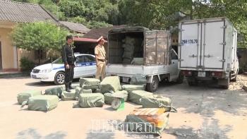 Lạng Sơn: Bắt giữ 2,3 tấn nầm lợn không có hóa đơn chứng từ