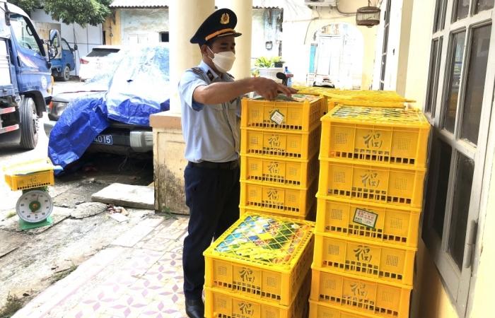 Lạng Sơn: Ngăn 1.650 kg nho xanh Trung Quốc lậu đang vận chuyển đi tiêu thụ