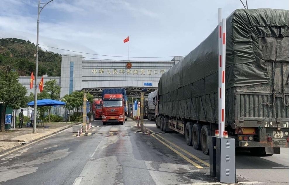 Lạng Sơn: Triển khai đề án thí điểm nhập khẩu dược liệu qua cửa khẩu Chi Ma