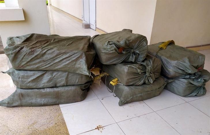Biên phòng Chi Ma thu giữ sản phẩm động vật nhập lậu