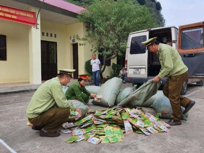 Lạng Sơn thu giữ trên 11.000 gói hạt giống rau, quả nhập lậu