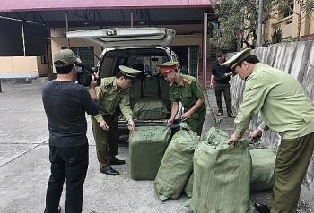 Lạng Sơn: Bắt giữ 600kg nầm lợn đã bốc mùi hôi thối