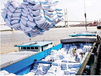 Đầu năm đã khấp khởi xuất khẩu gạo