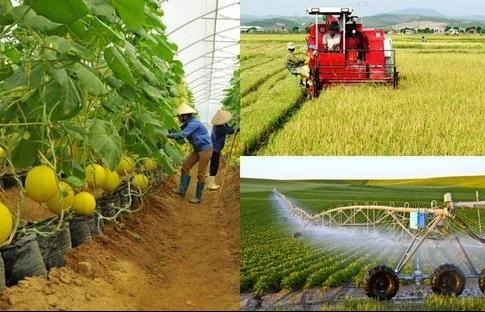 Thúc tái cơ cấu, nông nghiệp Việt muốn tăng xuất khẩu nông sản 5%/năm