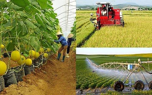 Đến 2025, tốc độ tăng trưởng giá trị ngành nông nghiệp từ 2,5-3%/năm