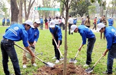 Chính thức trình Thủ tướng đề án trồng 1 tỷ cây xanh