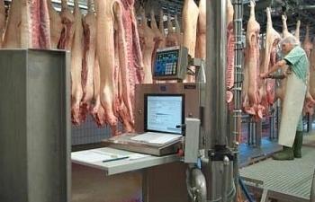 Tới 80-90% nguồn cung thịt lợn Tết đến từ các doanh nghiệp