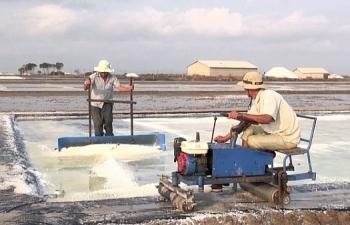 Mở rộng diện tích sản xuất muối quy mô công nghiệp trong 2019