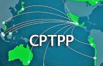 Thắc mắc về CPTPP, hỏi ở đâu?