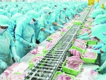 Xuất khẩu thuỷ sản đứng đầu Đông Nam Á, thứ 4 thế giới