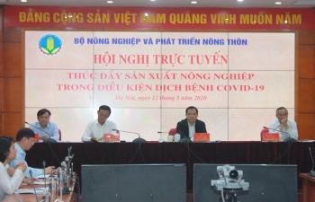 Nông nghiệp Việt tiếp tục