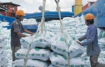 Hơn 55.000 tấn gạo được phép xuất sang Hàn Quốc với thuế suất 5%