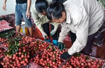 Hàng Việt mãi chưa thâm nhập nổi thị trường Indonesia