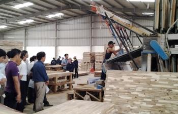 Việt Nam điều tra chống bán phá giá ván gỗ Thái Lan và Malaysia