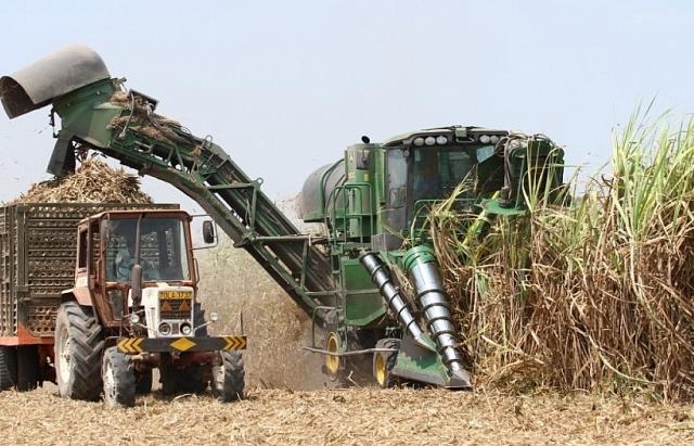 TTC Sugar đẩy mạnh xuất khẩu đường sang EU, Trung Quốc