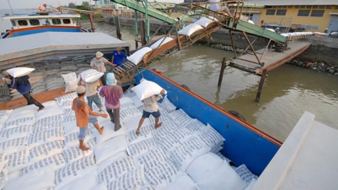 khong yeu cau phai do hang ra khoi container de kiem tra gao xuat khau