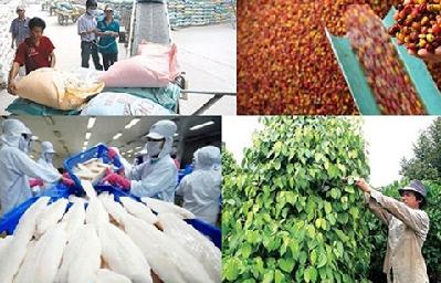 Tận dụng từng khe thị trường để xuất khẩu nông sản
