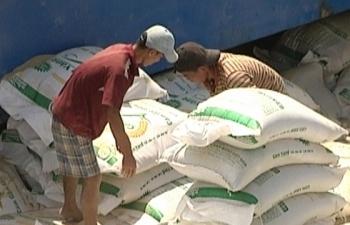 Ai Cập mời thầu nhập khẩu 20.000 tấn gạo