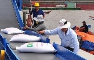 Xuất khẩu tăng hơn 100%, gạo Việt tại Anh chỉ mang thương hiệu nhà phân phối