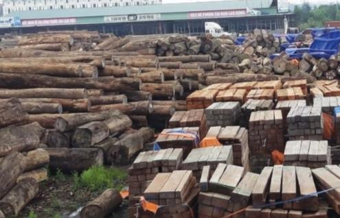 100% gỗ nhập khẩu phải có chứng chỉ để tránh kiện phòng vệ thương mại?
