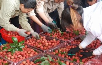 """Nông sản Việt Nam bán tấn thì nhiều mà """"két"""" lại bé"""
