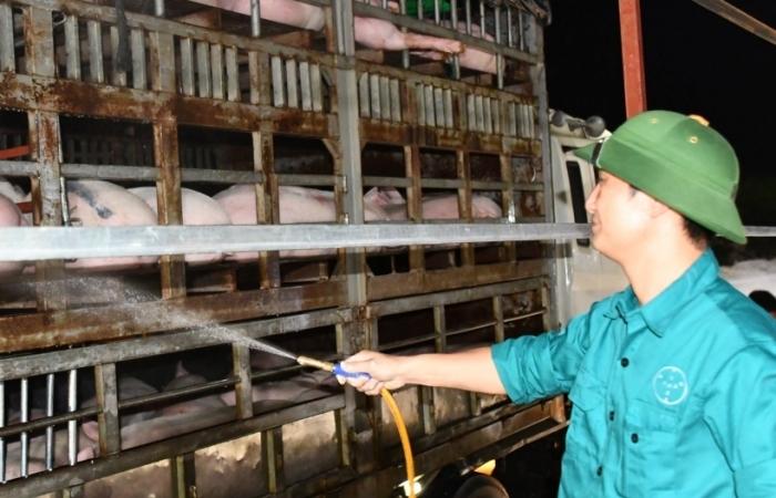 """Giá lợn mãi không giảm, Bộ NN&PTNT """"bêu"""" tên doanh nghiệp lớn"""