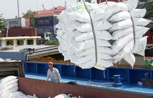 EU dành hạn ngạch 80.000 tấn/năm, xuất khẩu gạo có nắm được cơ hội?