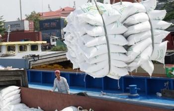 Xuất khẩu gạo Việt tăng tốc ngay từ đầu năm
