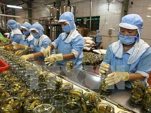 Hàn Quốc thay đổi cách kiểm tra cơ sở sản xuất thực phẩm xuất khẩu