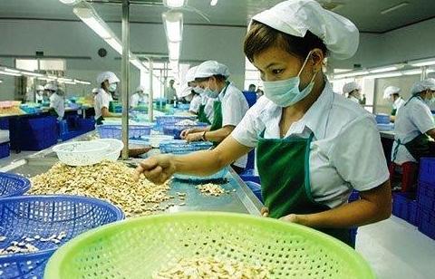 Xuất khẩu hạt điều hạ mục tiêu còn 3,2 tỷ USD