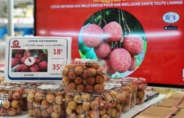 Đơn hàng tăng 20%, xuất khẩu rau quả cầm chắc 3,6 tỷ USD